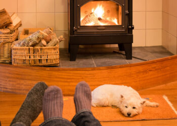 Dog Friendly Cottages Lake District What to Look for in a Dog-Friendly Lake District Cottage Blog Image