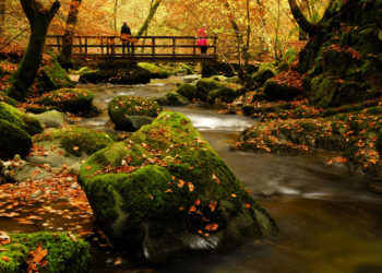 Coniston Cottages Celebrating Autumn in the Lake District Blog Image